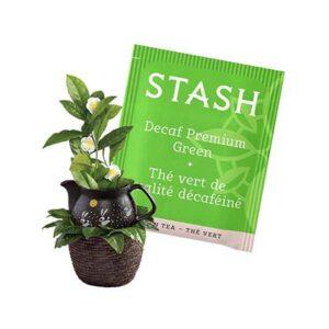 Stash Decaf Premium Green Tea Bags 30ct