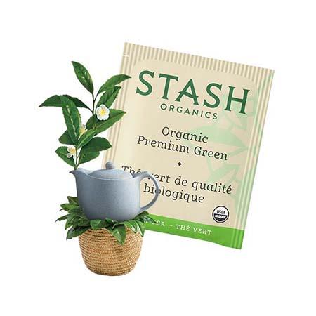 Stash Organic Premium Green Tea Bags 30ct