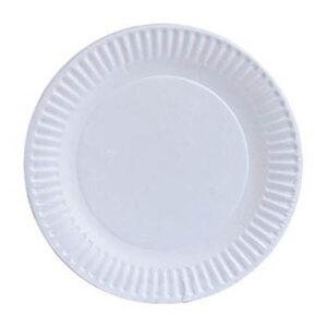 Paper Plate Heavy Duty 9in