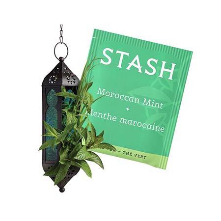 Stash Moroccan Mint Tea Bags 30ct